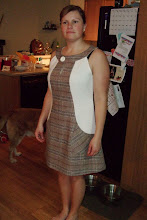 Nina's 60's Dress