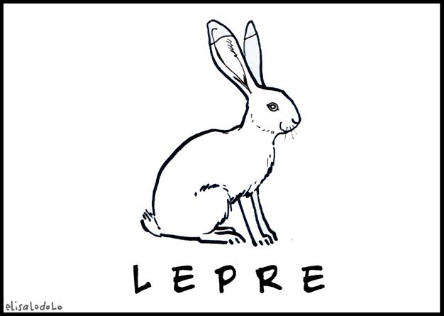 El draghillo animale del mese lepre for Lepre immagini da stampare
