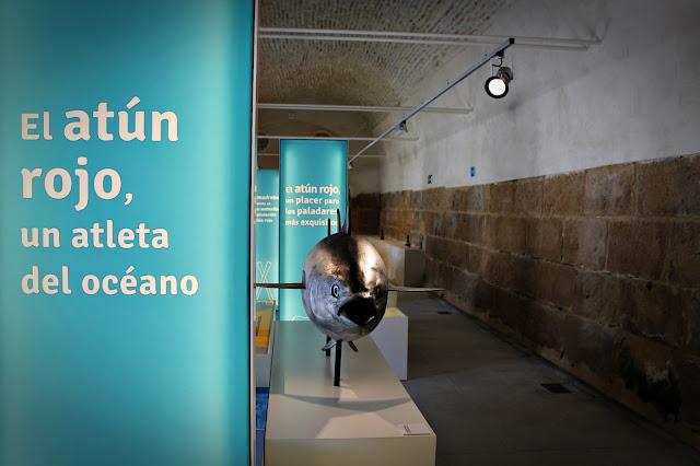 http://www.lacostadecadiz.com/index.php/noticias-de-conil/476-conil-interpreta-su-relacion-con-el-atun-las-almadrabas-y-el-mar