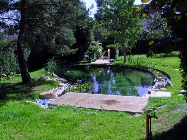 Bassin de baignade paysagiste val d 39 oise cr ation jardin 95 - Bassin baignade biologique bordeaux ...