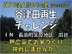 谷津田再生2011
