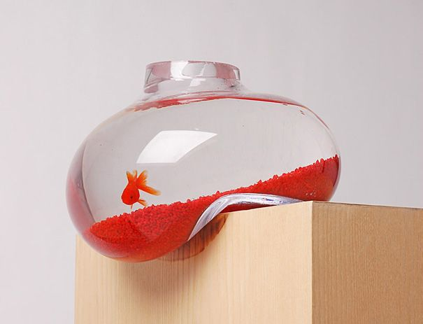 20 Akuarium Paling Unik dan Kreatif di Dunia : Balancing Fishbowl