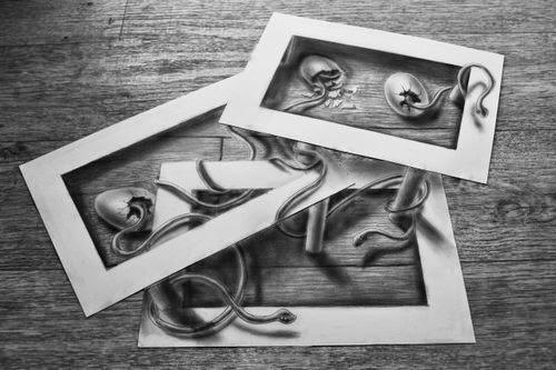 14-Newborn-Serpentism-Optical-Illusionism-Ramon-Bruin-www-designstack-co