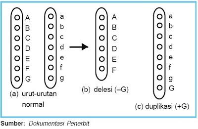 Delesi dan duplikasi kromosom