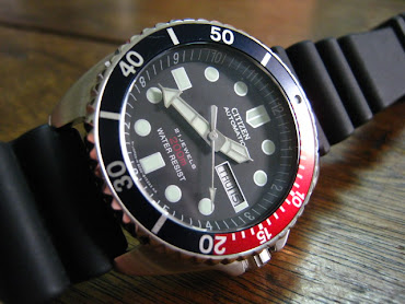 rm700 (hold): citizen promaster (D:40mm)