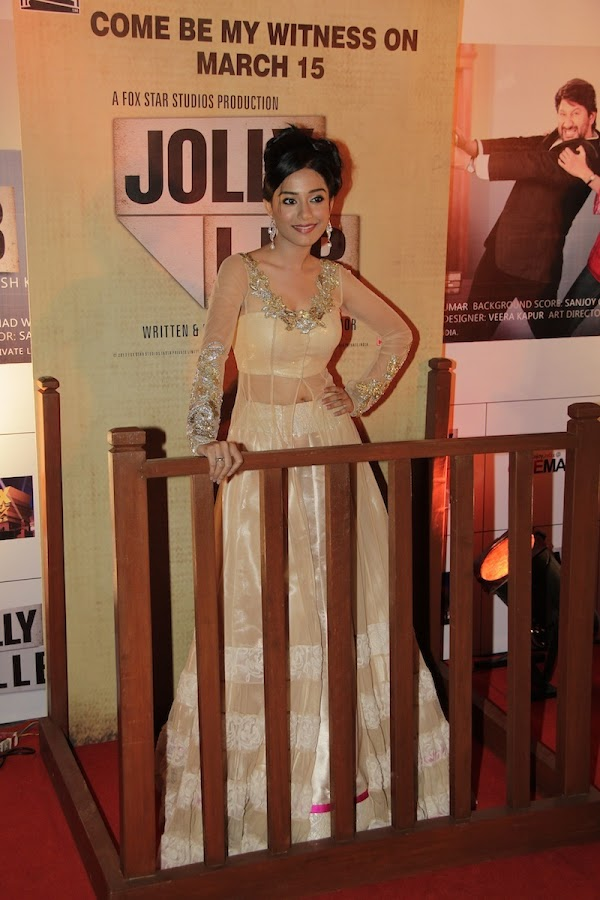 Top Bollywood Stars at Jolly LLB Premiere Photo Gallery