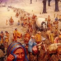 Penjelajah Muslim Lebih Dulu Injak Amerika Daripada Colombus