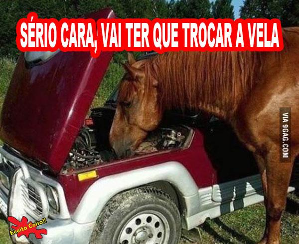 cavalo, mecanico, consertar, eeeita coisa