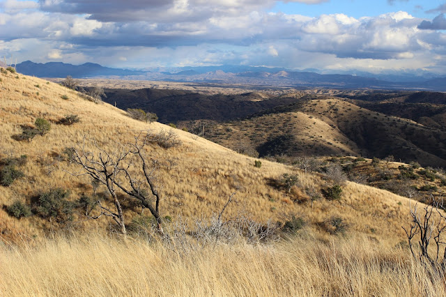 Hunting%2Bfor%2BCoues%2BWhitetail%2Bin%2BMexico%2Bwith%2Bguides%2BJay%2BScott%2Band%2BDarr%2BColburn%2B3.JPG