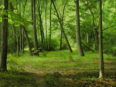 realismo-paisajes