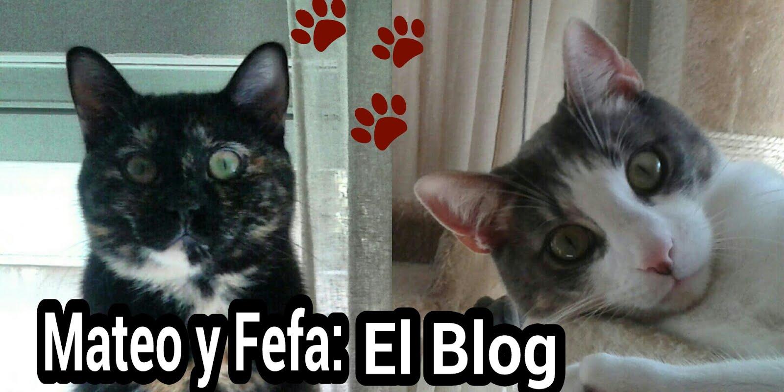 Mateo y Fefa: El blog