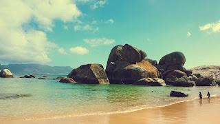 Playa de rocas en el oceano & pingüinos