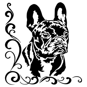 French Bulldog Bruno