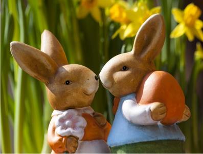 Tips mengawinkan kelinci 100% bunting