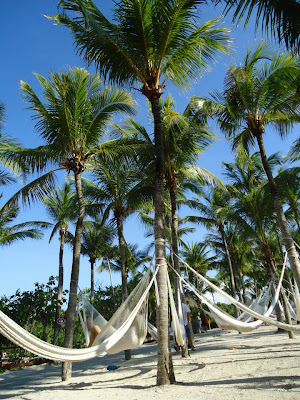 Tumbonas en playa de México