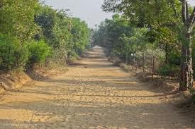 Picture of path around Govardhan Parikrama