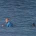 Surfista é atacado por tubarão durante final de surf;