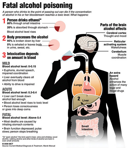 the effects of alcohol on the Antabuse interferes with the metabolism of alcohol and is used to treat chronic alcoholism learn about side effects, interactions and indications.