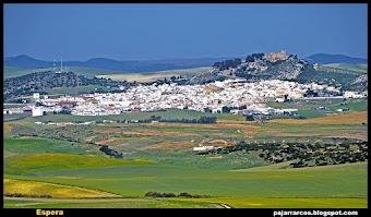 Espera (Sierra de Cádiz)