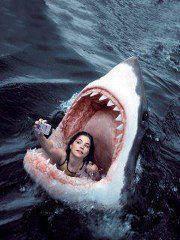 http://4.bp.blogspot.com/-o7pfUKhxPUM/Tx1EojHaaEI/AAAAAAAAAZI/d6c02hdS5F4/s1600/shark%2Bgirl.jpg