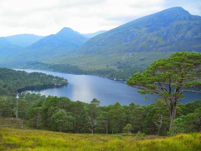 Loch Affric, Glen Affric, Highlands, Scotland, Escòcia, Regne Unit, United Kingdom