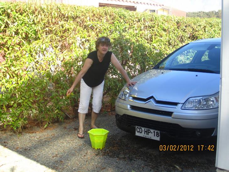 LA abuela as de la limpieza