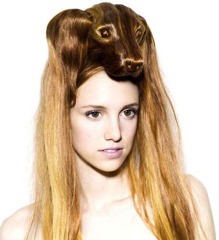 Amazing Animals Hairstyle Collection
