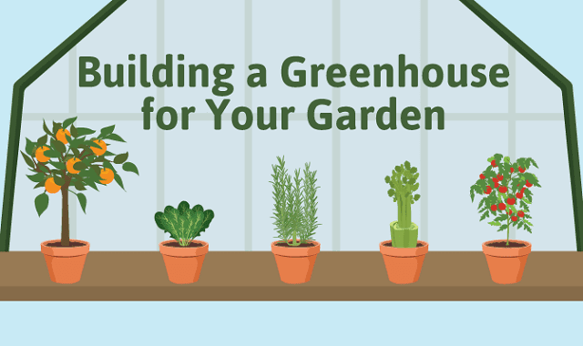 Building a Greenhouse for Your Garden