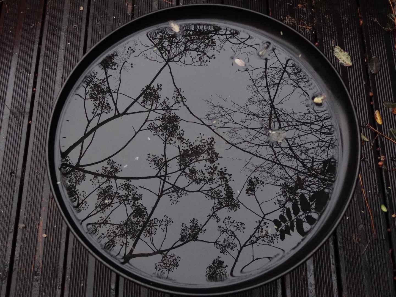 """Déficoncours """"Reflet dans l'eau"""" - participations 2013-01-01+001_005"""