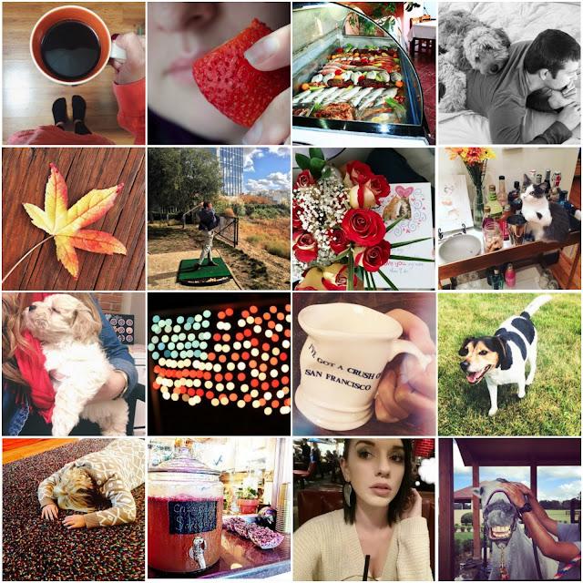 #PLUCKYtoNOTHIN November Instagram Challenge