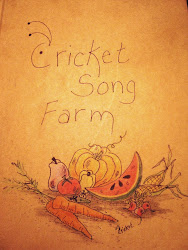 Kick off your boots, sit a spell and read the adventures of my little sustainable farm.