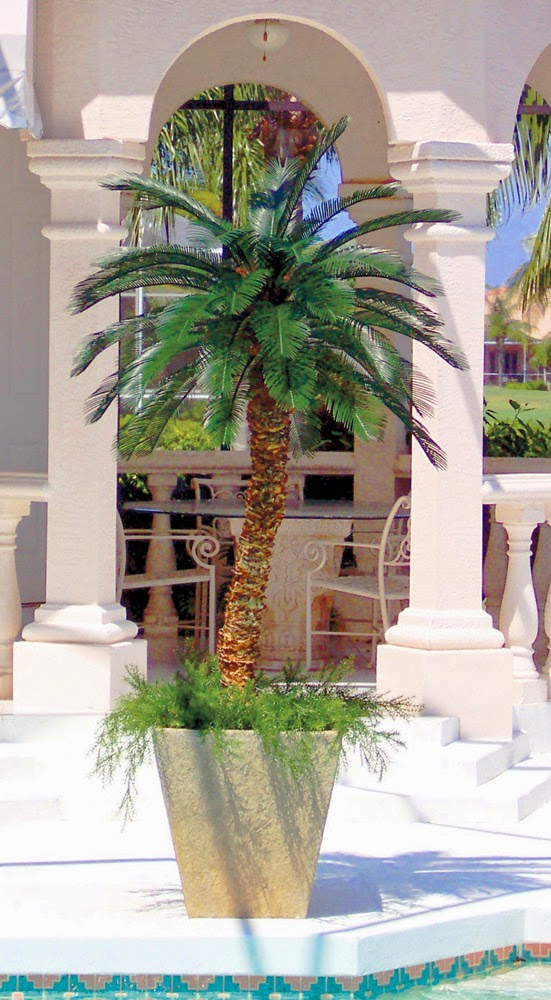 Quality Silk Plants Blog Artificial Palm Trees Outdoor