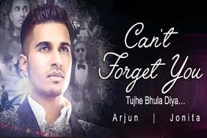 Can't Forget You (Tujhe Bhula Diya) (2015)