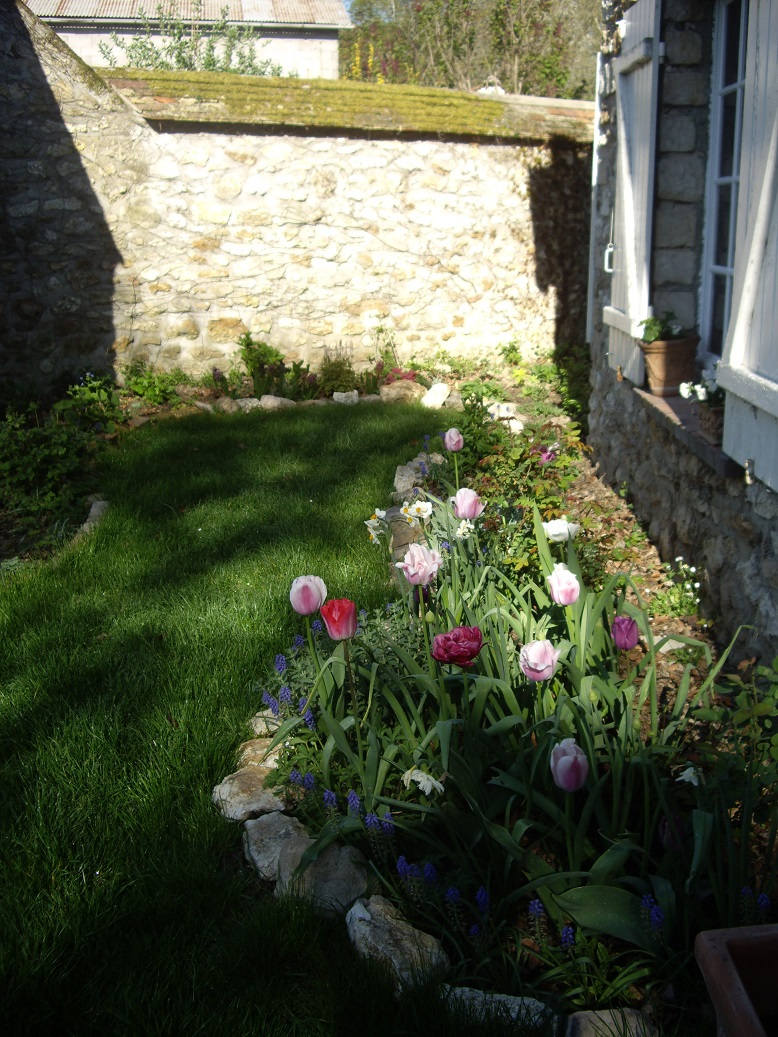 Derri re les murs de mon jardin un petit tour au jardin - Derriere les murs de mon jardin ...