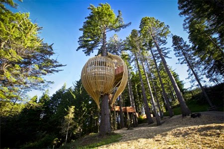 Tree House Restaurant [lensaglobe.com]