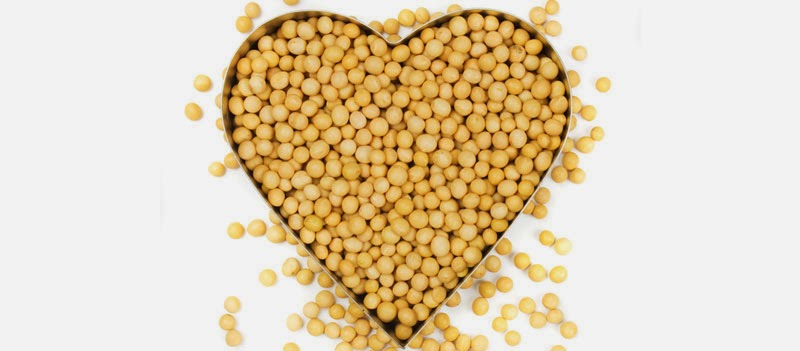 10 Beneficios de Consumir Soya