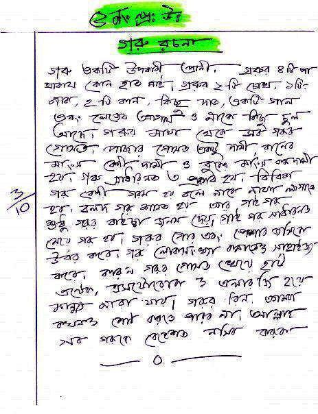 Bangla essay in bengali version