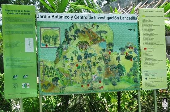 Viaje a lancetilla viaje a lancetilla for Centro de eventos jardin botanico