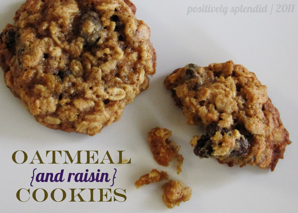 Chewy Oatmeal-Raisin Cookies - Positively Splendid {Crafts, Sewing ...