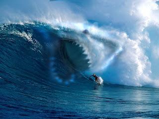 Mako Sharks Wallpaper