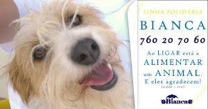 Linha 760 Bianca