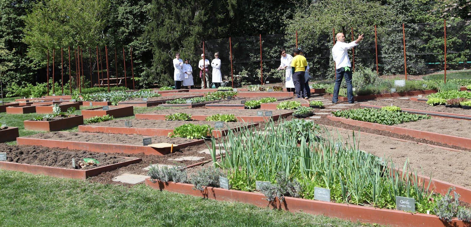 white house easter egg roll 2012: White House Kitchen Garden, Before ...