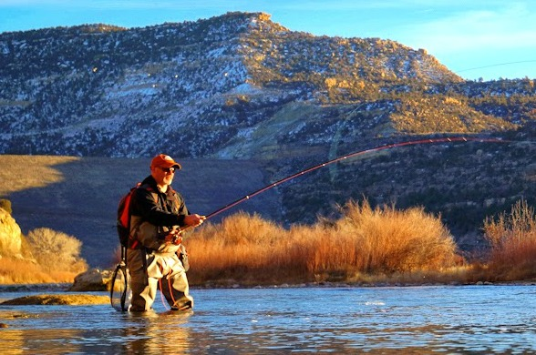 Trout Spey Chronicles