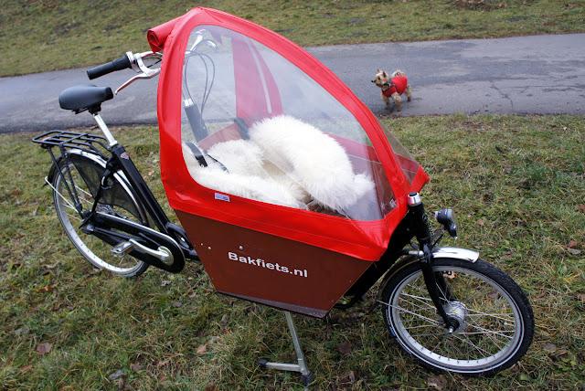 Rower cargo, towarowy bakfiets do przewozu dzieci