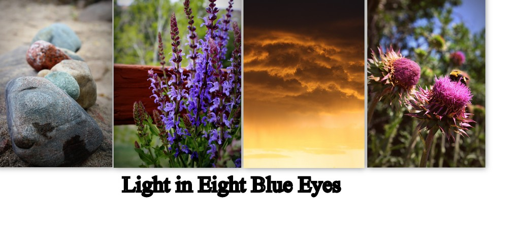 Light in Eight Blue Eyes