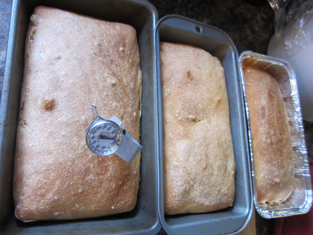 Frugal Ain't Cheap: Cinnamon Raisin Bread