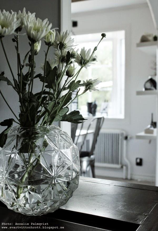 hemtex, vas, vaser, rund form på vas, runda vaser, blomma, blommor,