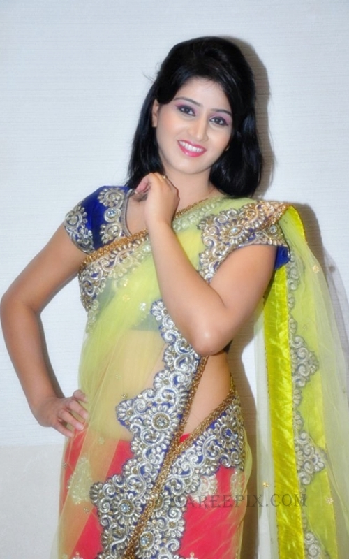 Shamili agarwal in saree at Desire exhibition