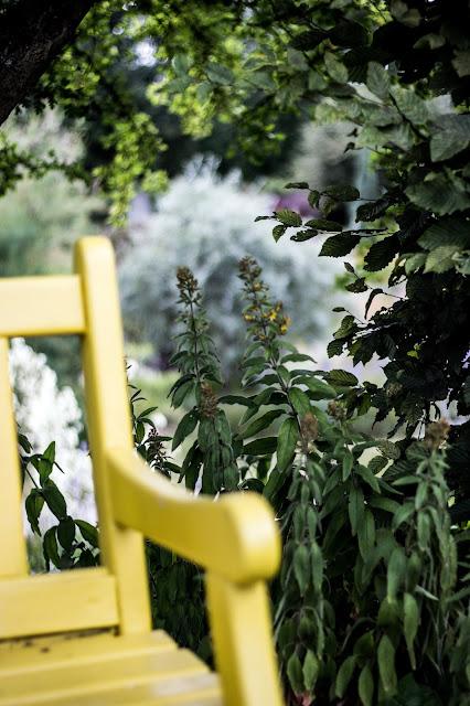 Garten der Sinne, gelbe Gartenbank, grünes Zimmer, Themengarten
