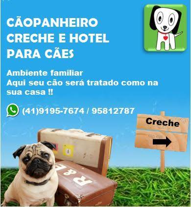 Hotel para cães - Residencial (apenas um ou dois cães por vez, castrados e vacinados, porte peuqeno